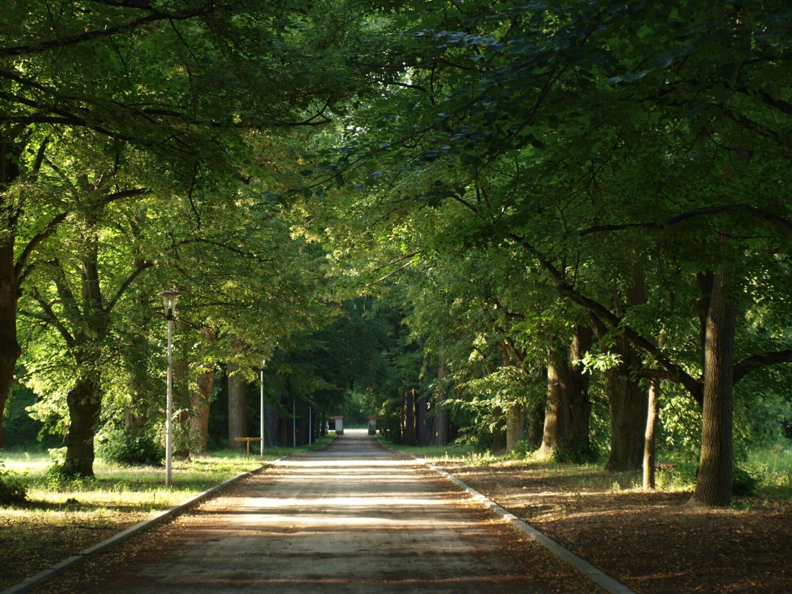 Podkowa Leśna, czyli miasto – ogród