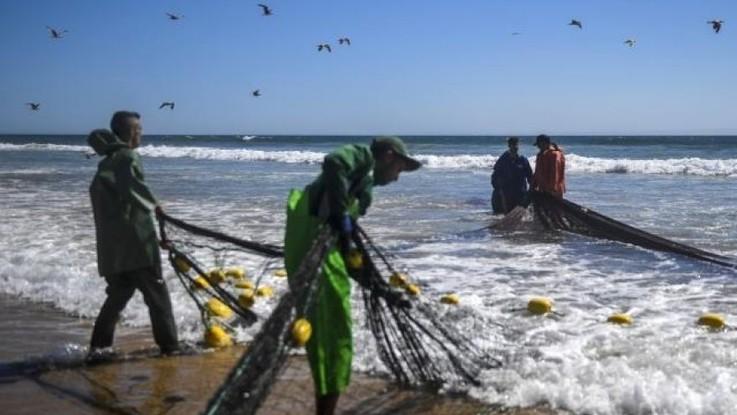PE: nowy EMFAF na straży zrównoważonego rybołówstwa